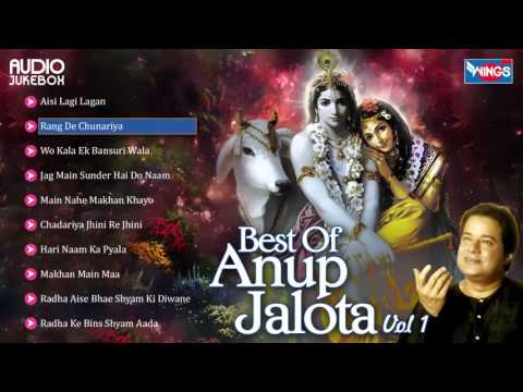 Top 10 Anup Jalota Bhajans | Hindi Non Stop Bhajan Sandhya | Anup Jalota Songs Mp3