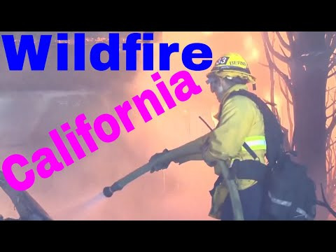 Live Wildfire News | People Fleeing In Cars And On Foot
