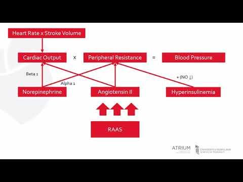 Les principaux signes dhypertension rénale