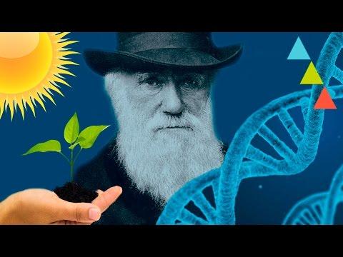 Cosas de biología que debes saber para no quedar mal