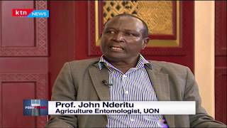Prof. Nderitu calls for National coordination eradicating locust | Point Blank with TG | Part 2
