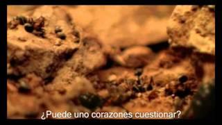 Rammstein   Links 2 3 4 [Official Music Video] (Sub Esp)