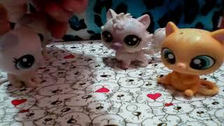 Кошки vs собаки сериал 1 серия