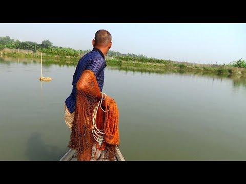Unbelievable Cast Net Fishing Videos।Catching Lot of Big Fish By Cast Net।fishing videos (part- 435)