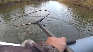 Ловля щуки на реке ишим тюменской области