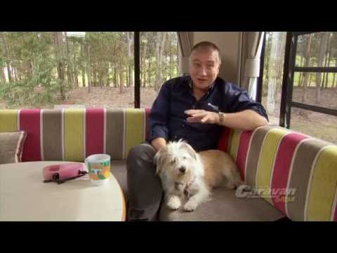 Caravanning & Camping with Pets