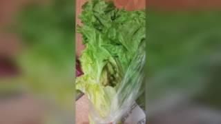 Мышь в салате