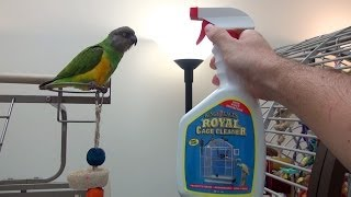 Cleaning Parrots Cages - Review and Free Sample Contest
