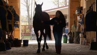 "Indiana girl turns ""runt"" into championship winning horse"