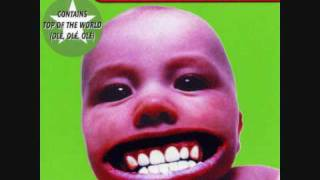 chumbawamba creepy crawling