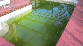 How to Clear Up Green Swimming Pool Water Pt. 4