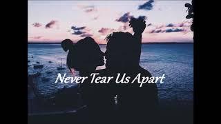 Never Tear Us Apart ( Vocals ) 🎙
