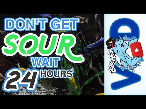 Don't Get Sour, WAIT 24 HOURS! (Video)