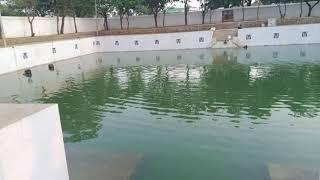 Travel experience  Bangalore to ahobilam Narsimha swamy temple for Darshan, Trip to ahobilam