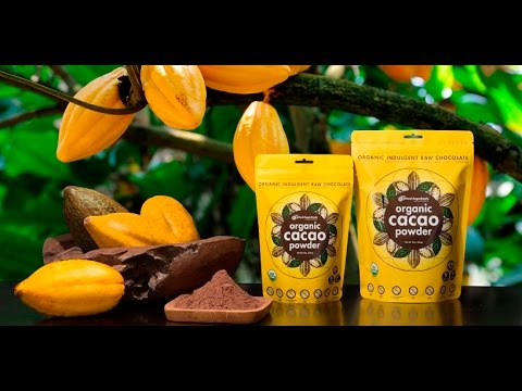 pHresh Superfoods Cacao – Raw Brownies Recipe