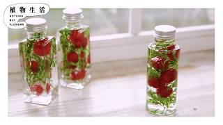 人気のハーバリウムの作り方 花と光を楽しむ