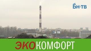 Невский район: экология на троечку