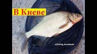 Ловля на фидер на течении леща с берега летом в августе 2019 на реке Днепр в Киеве на набережной