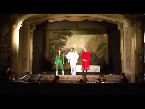 Preview video Mammalucca, Bagatella e Pattatocco 8- 9 gennaio 2011