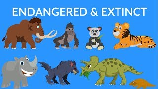 Endangered and Extinct Animals | Video for Kids | Rare Extinct Animals Video