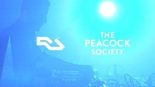 Ryan Elliott - Live @ The Peacock Society 2015