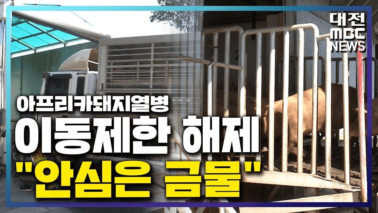 """[리포트]ASF 이동제한 해제..""""아직은 걱정"""""""