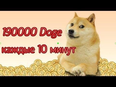 190 000 Doge каждые 10 минут