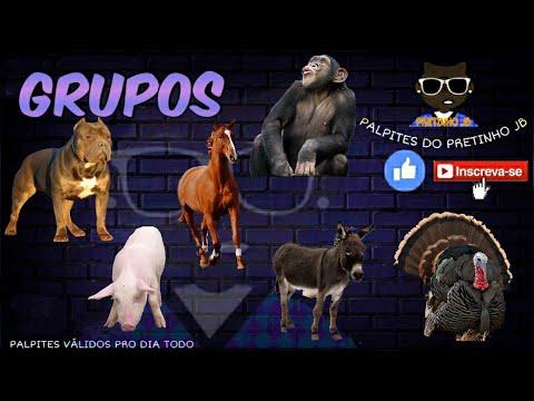 JOGO DO BICHO DE HOJE 17/10/2020 PARA TODAS AS LOTERIAS