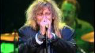 Cheap Trick - Hot Love - live Daytona 1988
