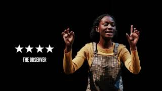 Noughts & Crosses Review   The Lowry   Manchester