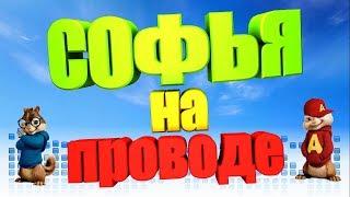 Песня про СОФЬЮ (Бурундуки)