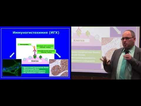 Современные схемы лечения хронического гепатита с