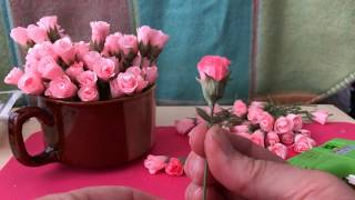 Mini Crepe Paper Rose Buds