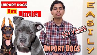 How to Import Dogs in India ( Rules & Required Documents ) | Amit Choudhary |