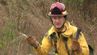 How to Prevent your house from burning down during a wildland fire.