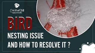 Bird Nesting Issue And How To Resolve It | Cre8iveSkill