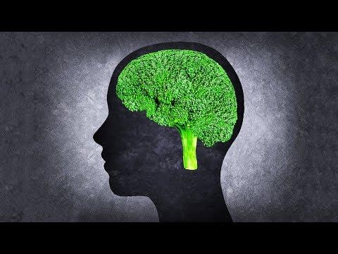 脳の働きを高め、記憶力を向上させる「ブレインフード」10選