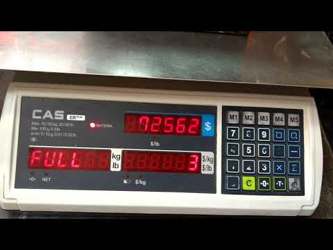 Ajuste de peso báscula (calibración) CAS modelo ER plus, capacidad, división