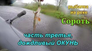Рыбалка на реке сороть псковской области
