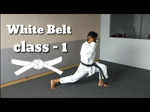 🥋karate class for kids and adults //learn at home //🥋 online karate lessons-1