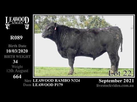 LEAWOOD RAMBO R089