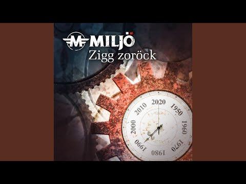 Zigg Zoröck: Video und Text