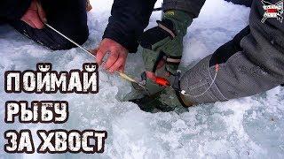ДЕРЖИ ЕГО ЛЁХА!!!  Зимняя Рыбалка в декабре на мормышку. Крупный голавль и много ерша.