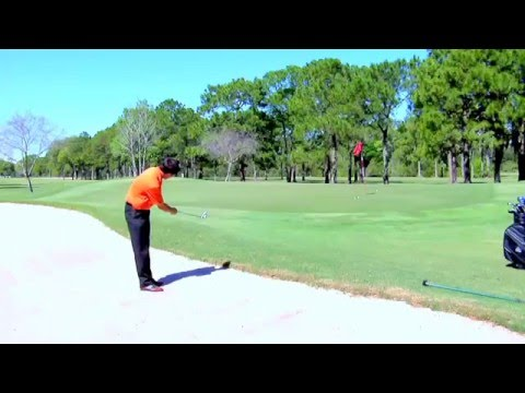 The Perfect Club Golf Chipper by The Perfect Club Golf Collection