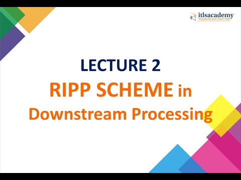 RIPP SCHEME in Downstream Processing