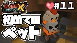 【switch】#11 -初めてのペット-【キューブクリエイターX/実況プレイ】