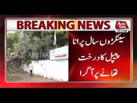 Karachi: Tree Crushes on City Court Police Station