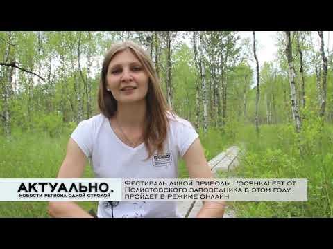 Актуально Псков / 29.07.2020
