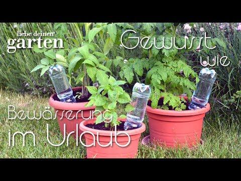 Gewusst wie - #9 Bewässerung im Urlaub mit PET-Flaschen | Liebe Deinen Garten
