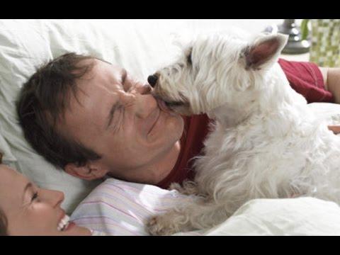 השעון המעורר הכי חמוד בעולם - הכלב שלכם